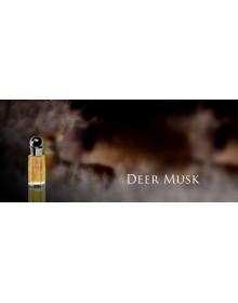 Deer Musk